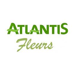 Fleurs Atlantis E.Leclerc Nantes